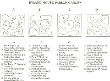 Medicinal Herb Garden Design Plans Grow a medicinal herb garden